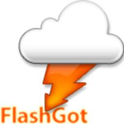 FlashGot logo icon